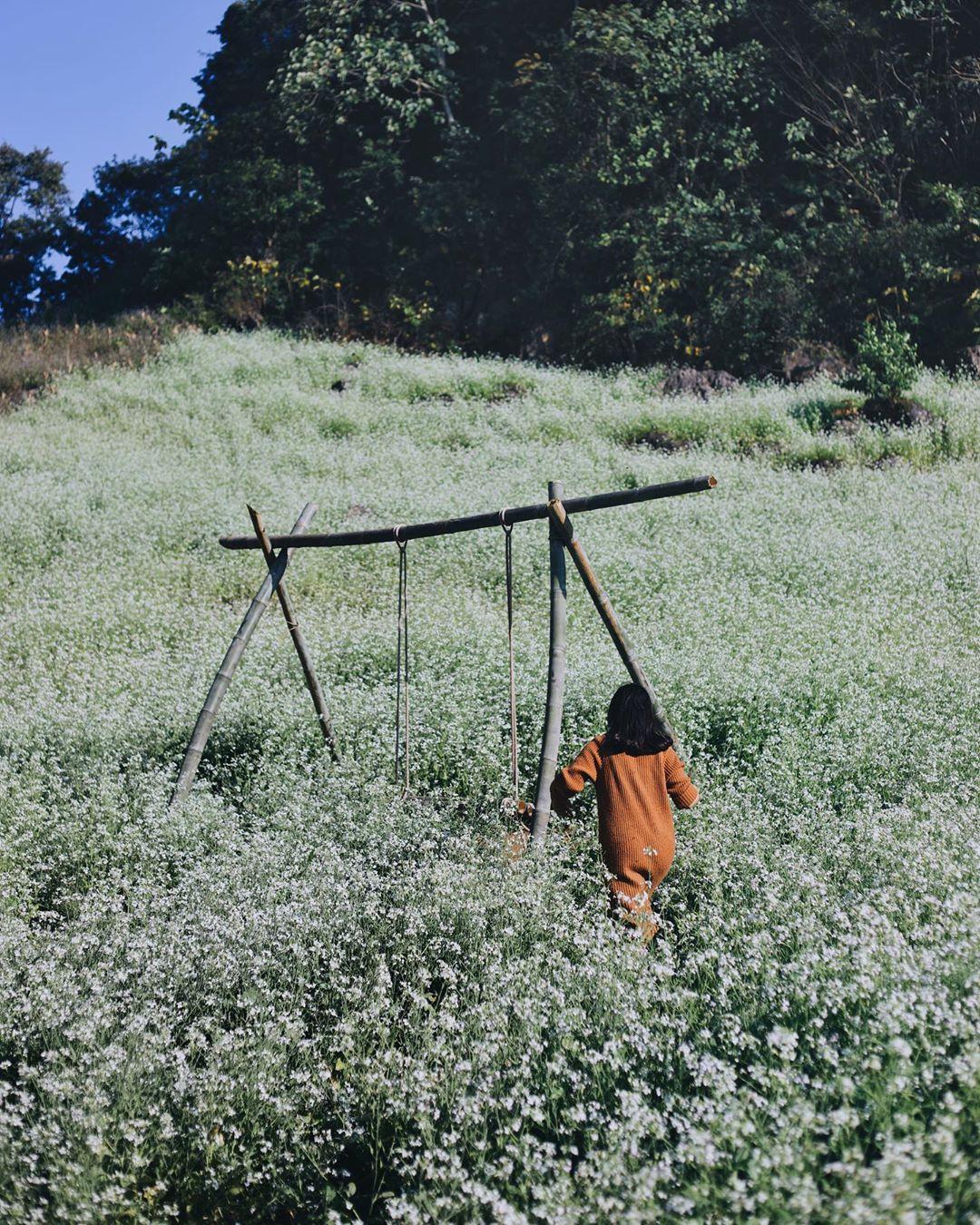 Mộc Châu ở đâu? Tìm về mảnh đất rực rỡ sắc hoa suốt bốn mùa - Ảnh 6.