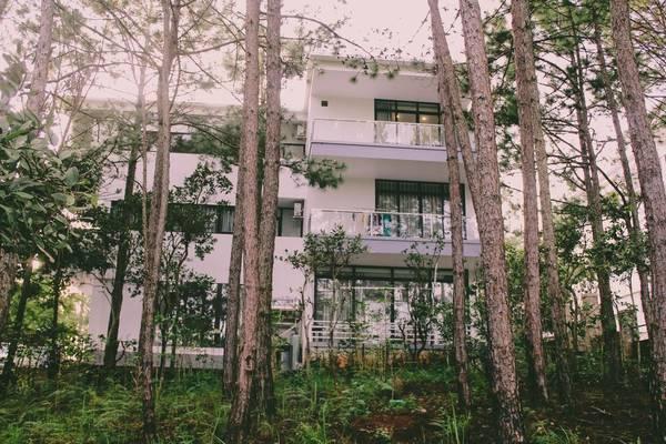 Review chi tiết khách sạn 5 sao Đà Lạt gần hồ Tuyền Lâm - Ảnh 9.