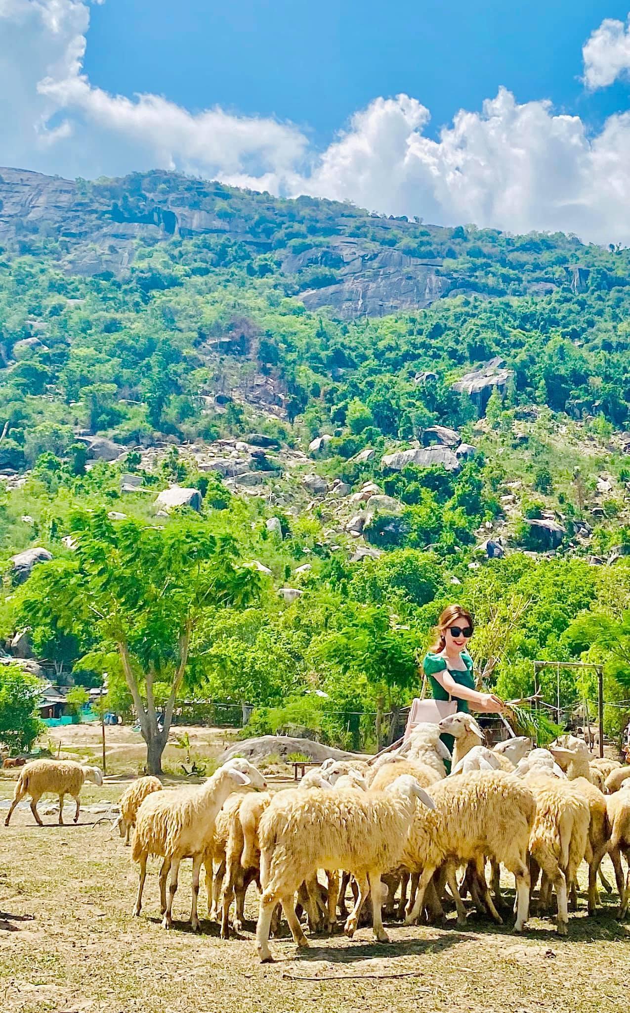 Tour du lịch Nha Trang khởi hành từ Hà Nội: Giảm giá sốc nhiều gói tour trong dịp hè này  - Ảnh 17.