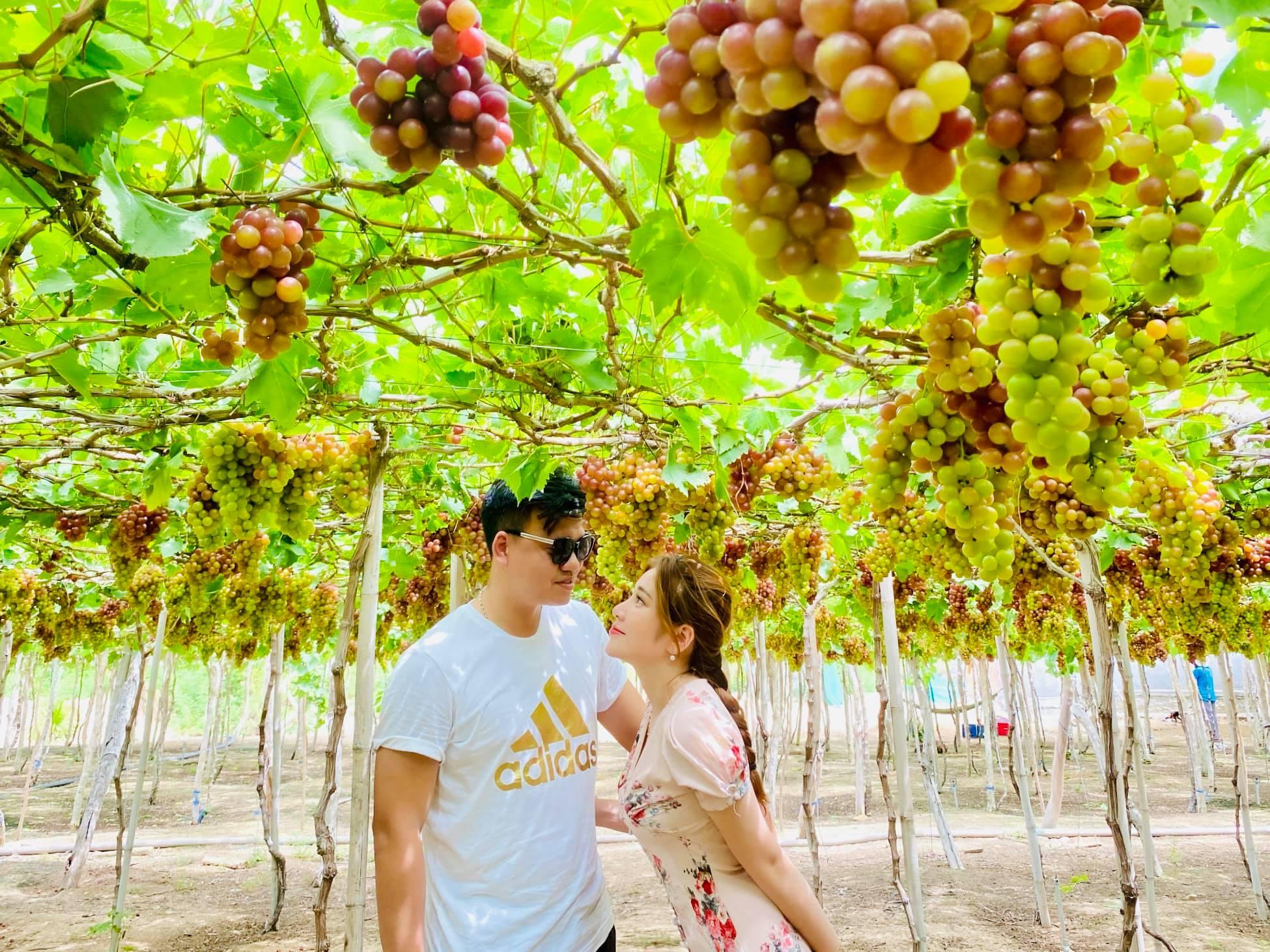 Tour du lịch Nha Trang khởi hành từ Hà Nội: Giảm giá sốc nhiều gói tour trong dịp hè này  - Ảnh 15.
