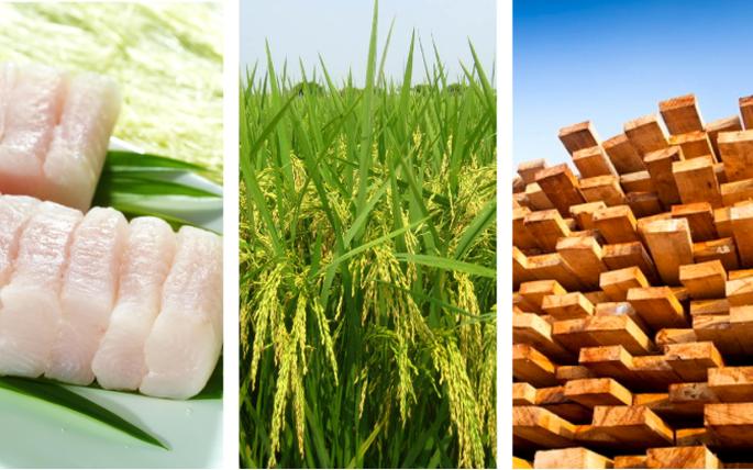 Nhiều ngành hàng xuất khẩu chủ lực của Việt Nam bắt đầu hưởng lợi từ EVFTA - Ảnh 1.