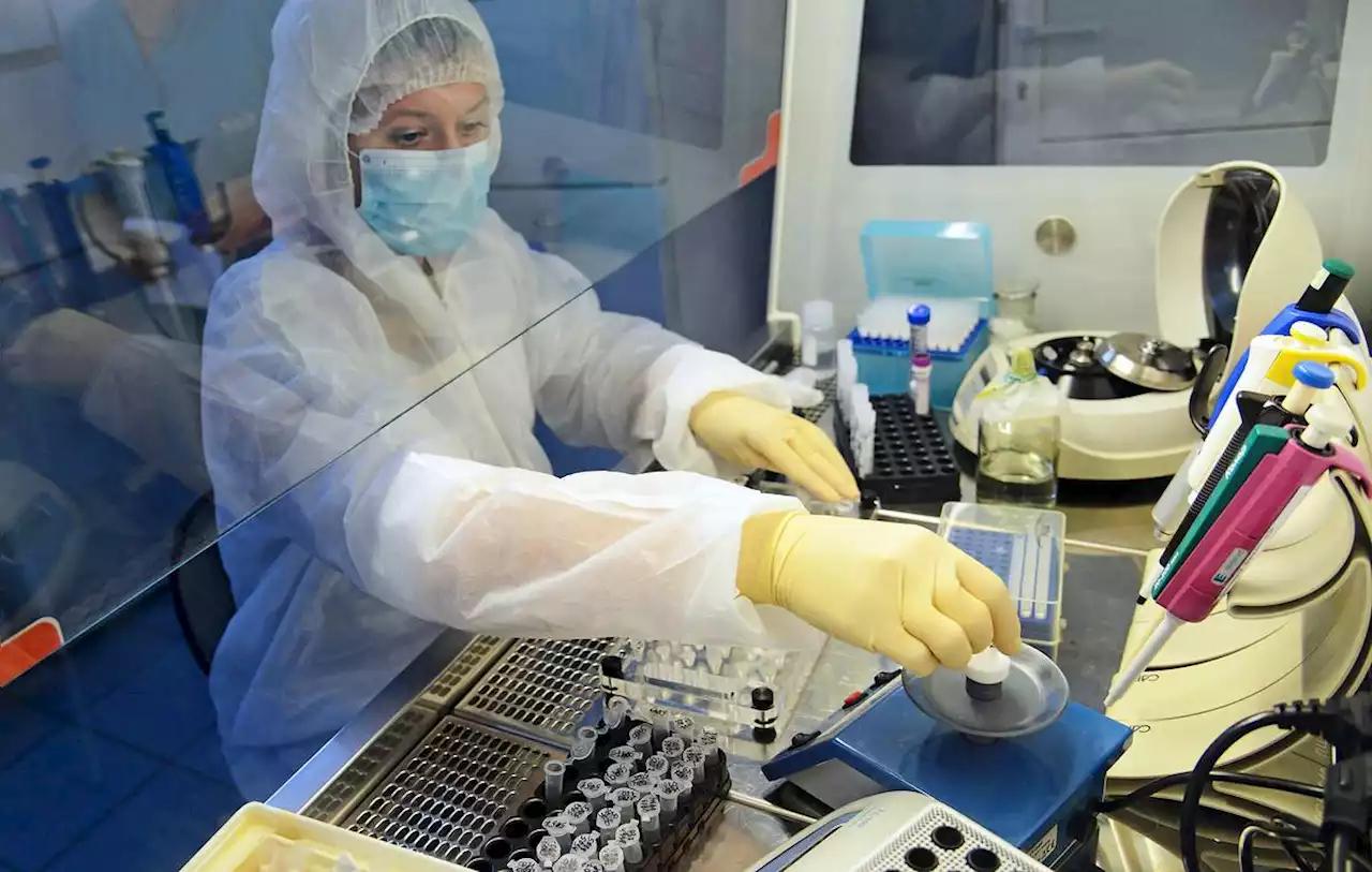 Việt Nam đang ở giai đoạn nào trong cuộc đua vắc xin COVID-19? - Ảnh 1.