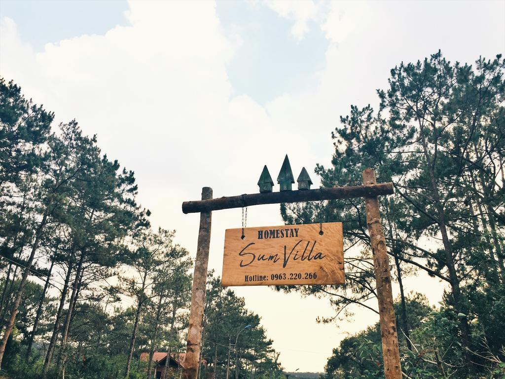 Những khu resort, homestay 'đẹp quên lối về' tại Măng Đen Kon Tum  - Ảnh 2.
