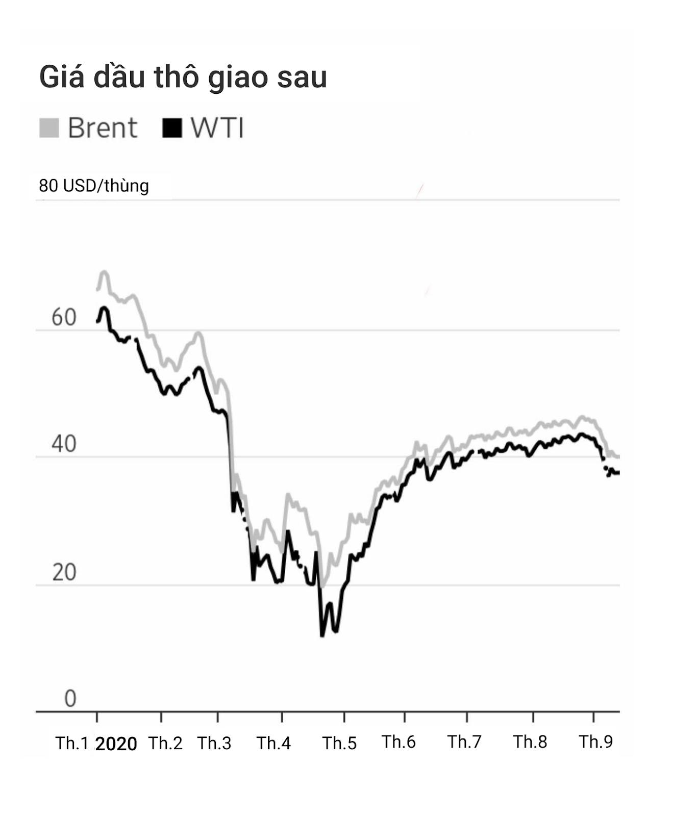 OPEC giảm dự báo nhu cầu dầu vào năm 2021 do tác động kéo dài của COVID-19 - Ảnh 1.