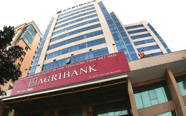 Nghi ngờ khả năng hoạt động liên tục công ty con của Agribank - Ảnh 1.