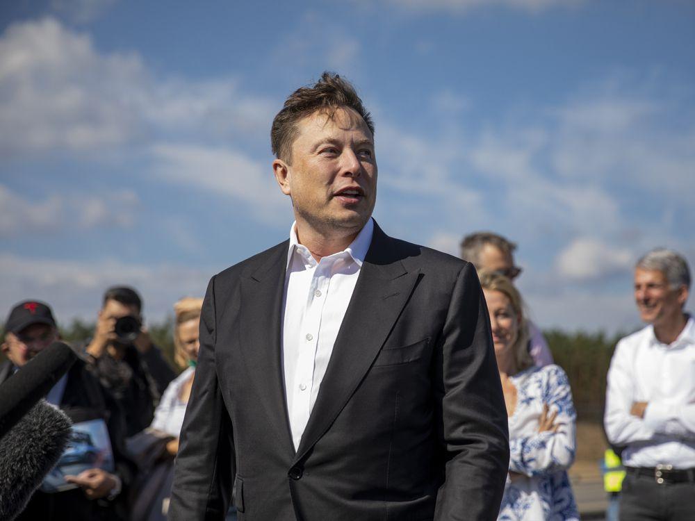 Tỷ phú Elon Musk lên Twitter hỏi cách làm từ thiện - Ảnh 1.