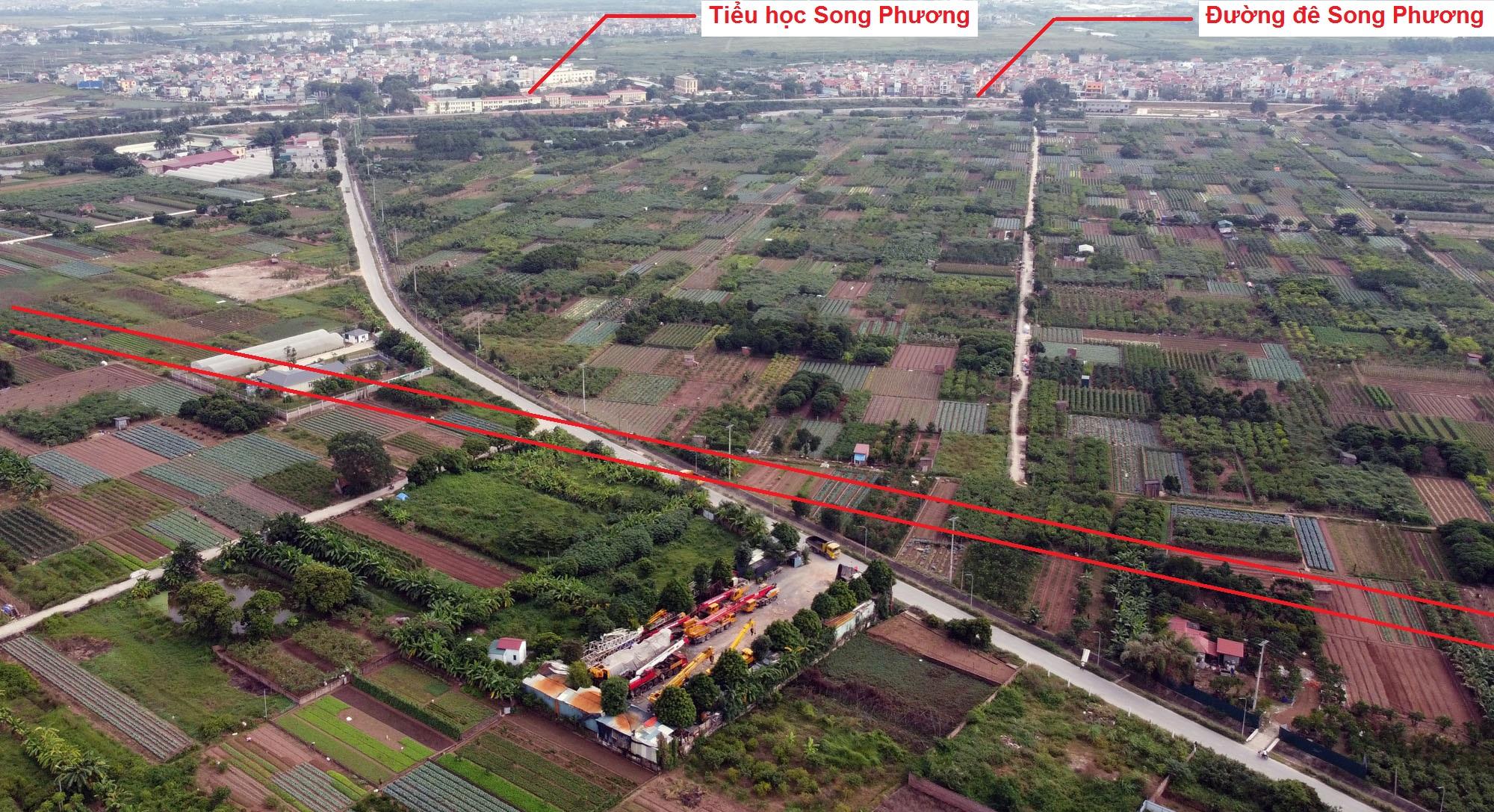 Ba đường sẽ mở theo quy hoạch ở xã Song Phương, Hoài Đức, Hà Nội - Ảnh 4.