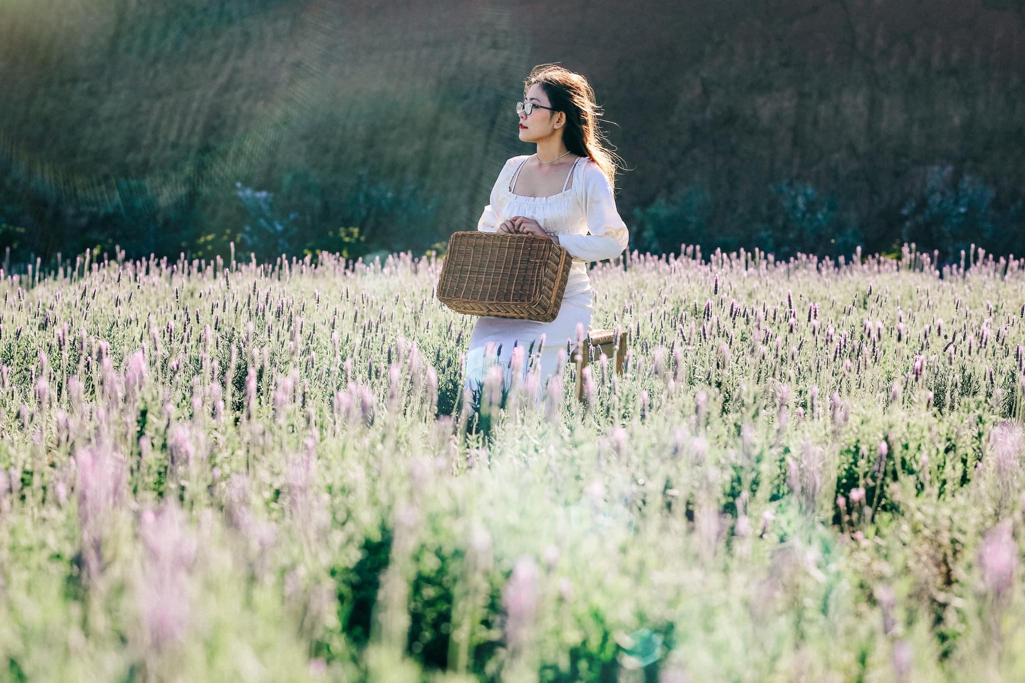 Check-in Vườn hoa lavender Túi Thương Nhớ, điểm đến 'mới toanh' tại Đà Lạt  - Ảnh 1.