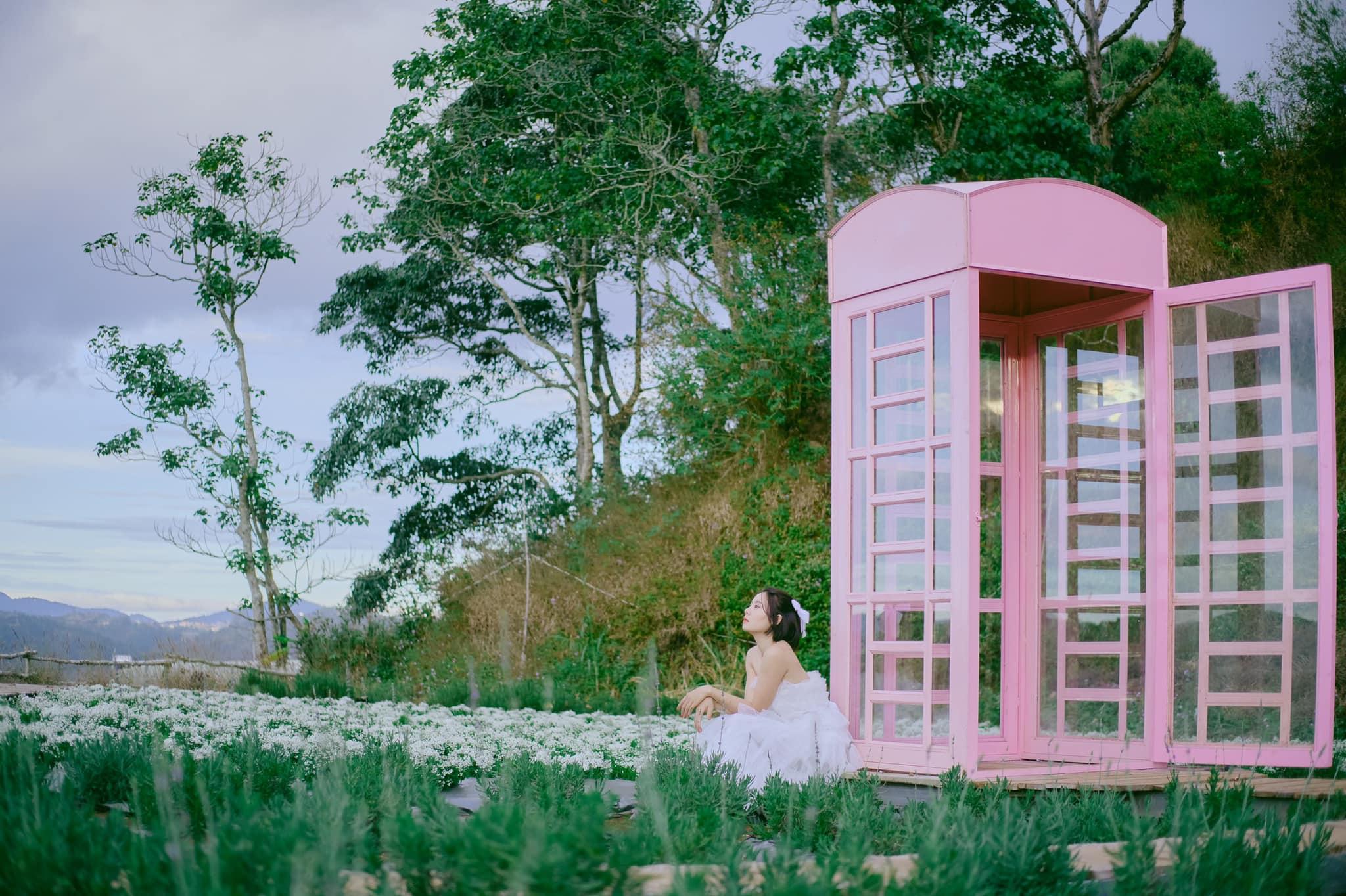 Check-in Vườn hoa lavender Túi Thương Nhớ, điểm đến 'mới toanh' tại Đà Lạt  - Ảnh 12.