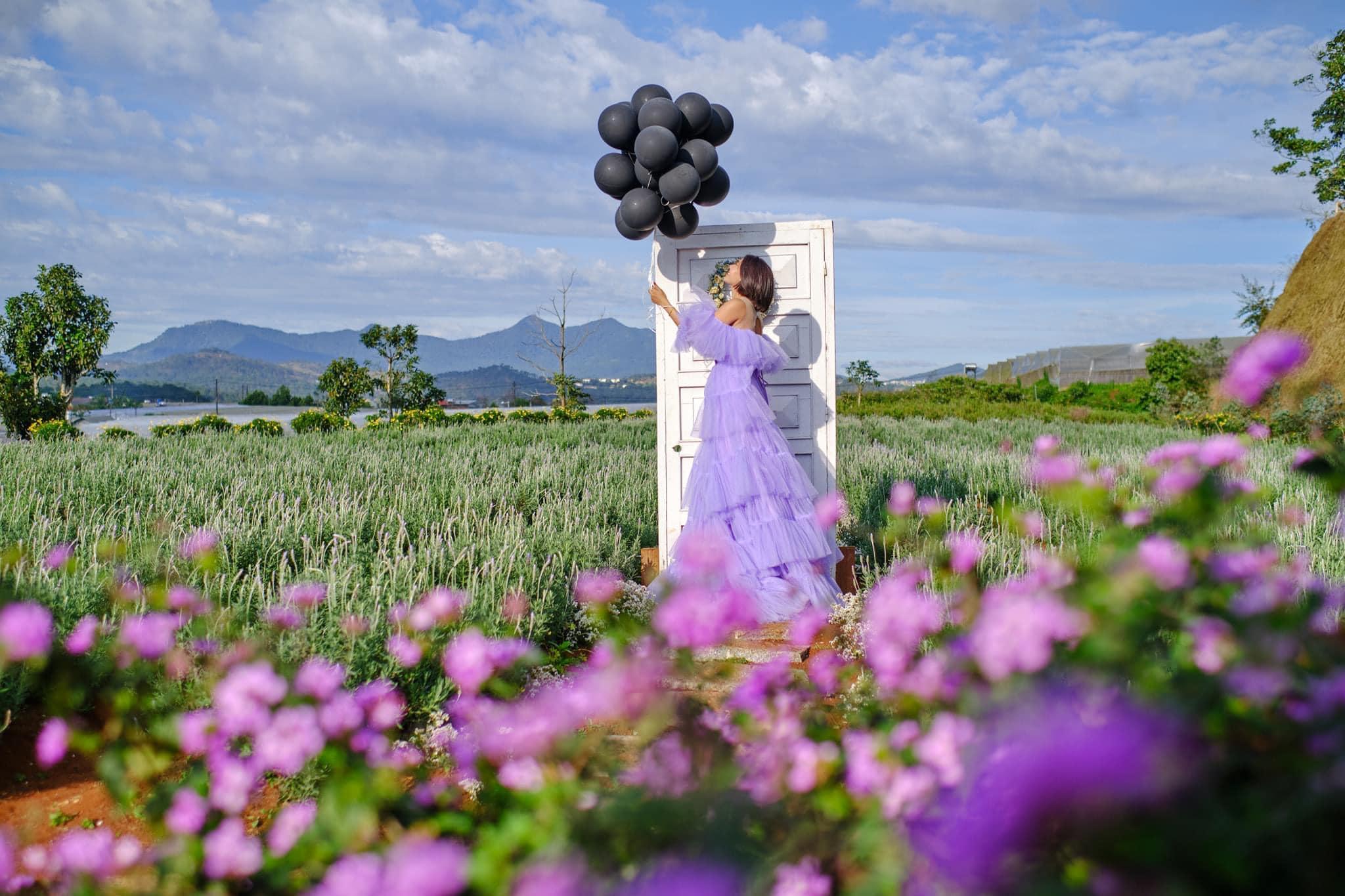 Check-in Vườn hoa lavender Túi Thương Nhớ, điểm đến 'mới toanh' tại Đà Lạt  - Ảnh 11.