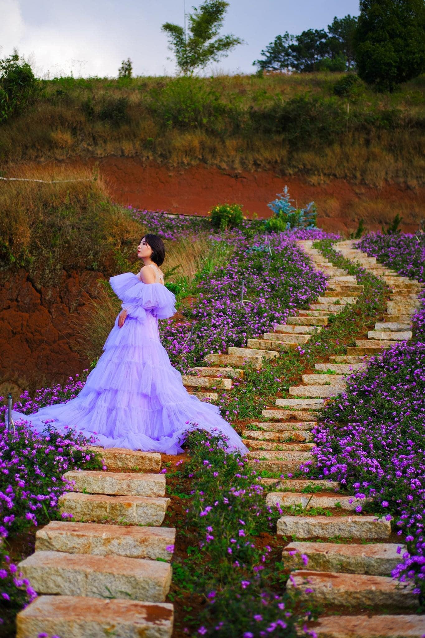 Check-in Vườn hoa lavender Túi Thương Nhớ, điểm đến 'mới toanh' tại Đà Lạt  - Ảnh 8.