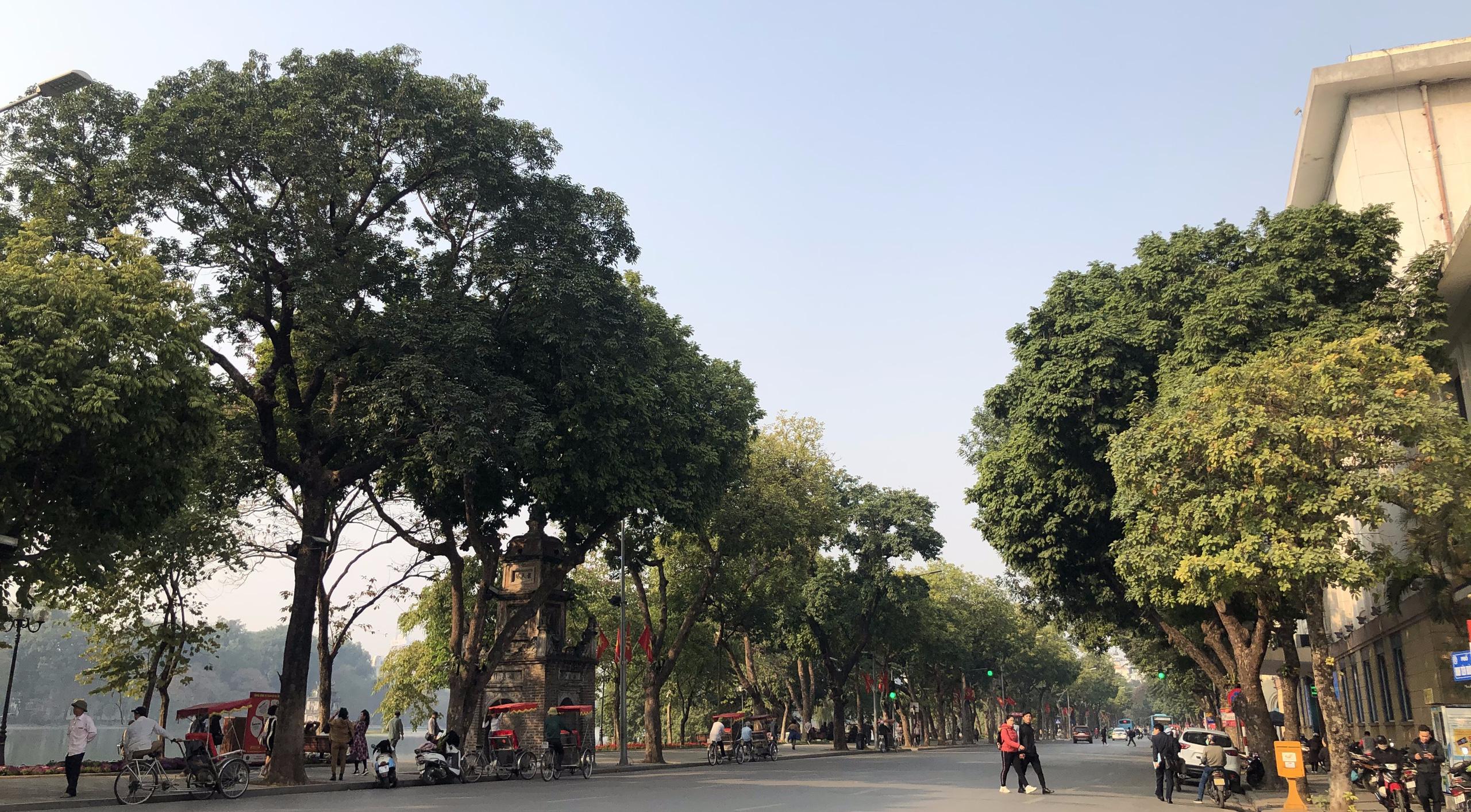 Giá đất phố Đinh Tiên Hoàng, Hoàn Kiếm, Hà Nội giai đoạn 2020 - 2024 - Ảnh 2.