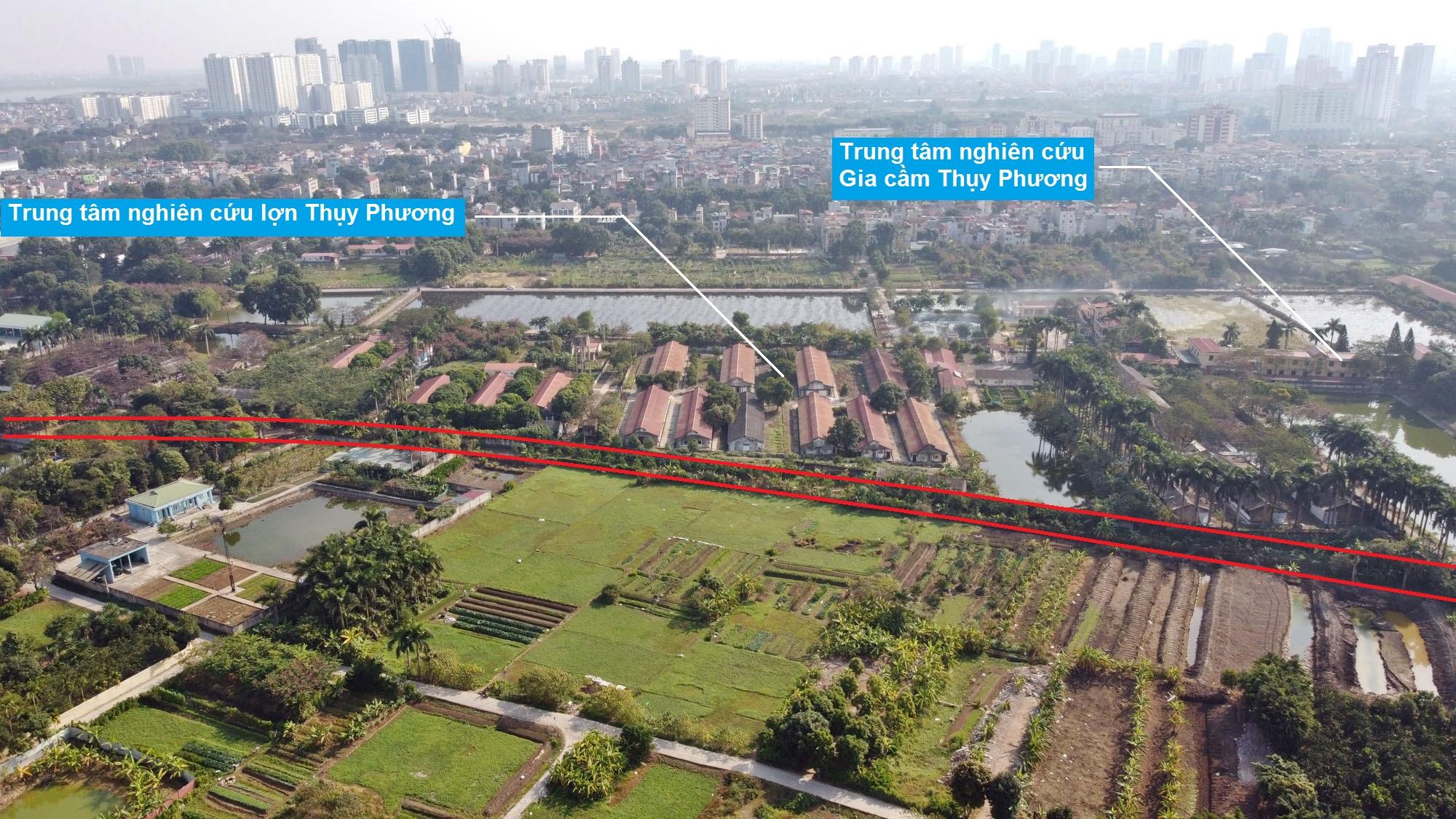 Ba đường sẽ mở theo qui hoạch ở phường Thụy Phương, Bắc Từ Liêm, Hà Nội (phần 2) - Ảnh 4.