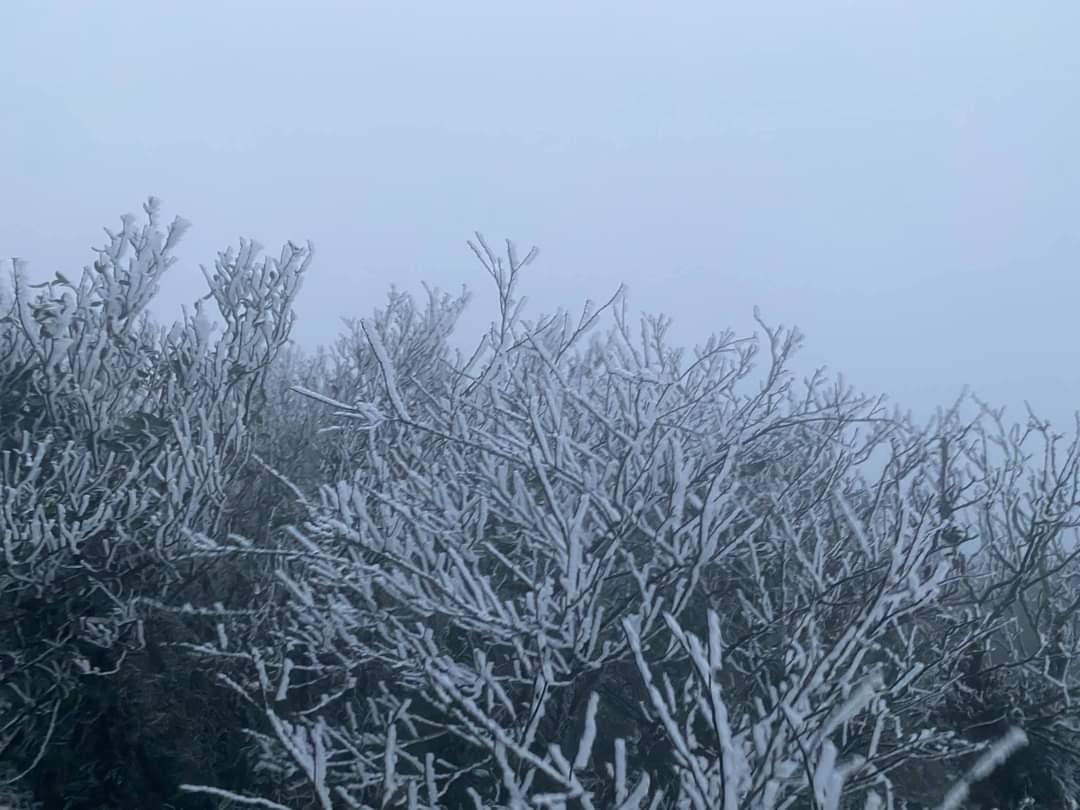 Thời tiết Hà Nội hôm nay 19/1: Không khí lạnh suy yếu dần, trời vẫn rét đậm, Hải Phòng đêm rét sâu - Ảnh 1.