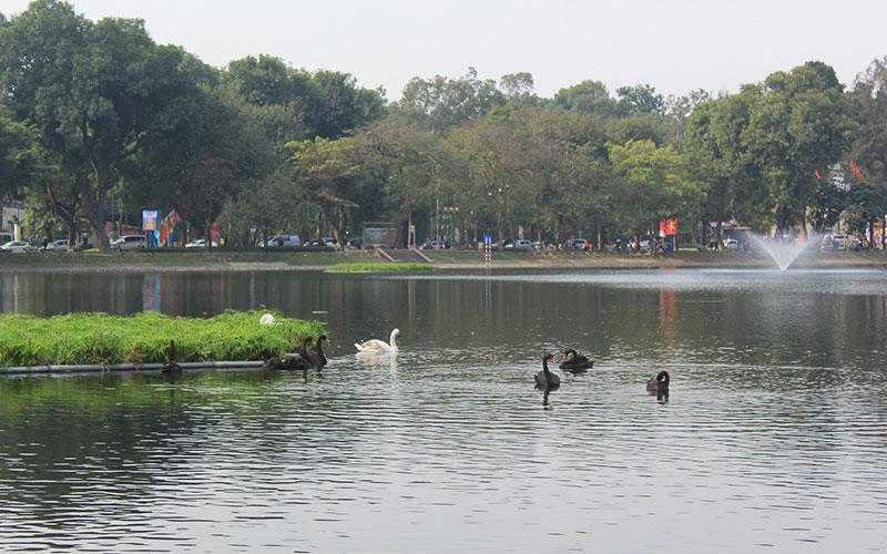Hà Nội sẽ có phố đi bộ quanh hồ Thiền Quang - Ảnh 1.
