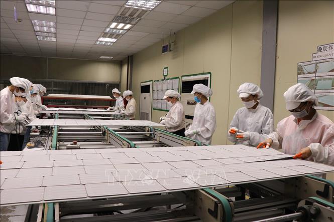 Các doanh nghiệp tỉnh Quảng Trị hoạt động cầm chừng hoặc ngừng sản xuất trong năm 2020 - Ảnh 1.