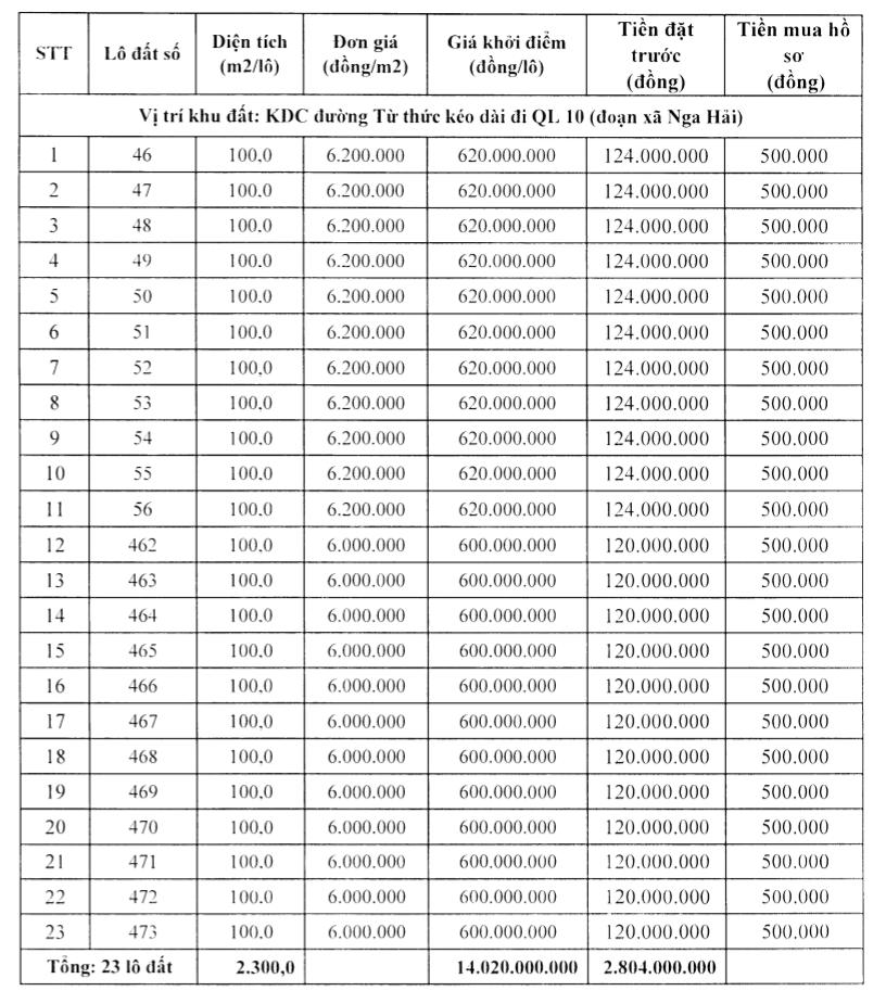 Thanh Hóa đấu giá 50 lô đất tại Nga Sơn, khởi điểm từ 500 triệu đồng/lô - Ảnh 2.
