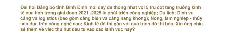 Sức hút mới từ Bình Định - 'trung tâm' của dải đất miền Trung - Ảnh 16.