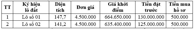 Đấu giá gần 289 m2 đất ở đô thị tại thành phố Nam Kỳ, Quảng Nam  - Ảnh 1.