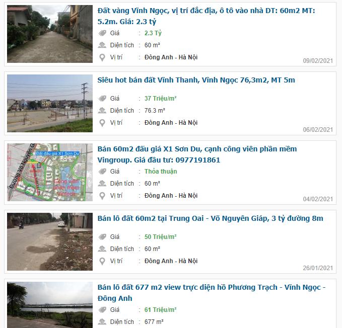Giá đất đường Võ Nguyên Giáp, Đông Anh, Hà Nội - Ảnh 4.