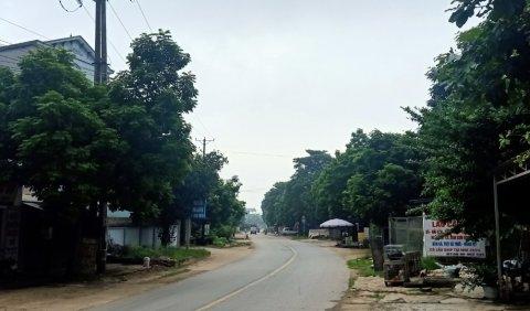 Đấu giá 128 m2 đất tại huyện Thạch Thất, Hà Nội - Ảnh 1.