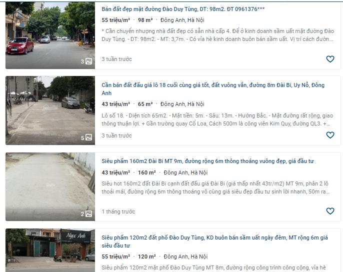 Giá đất đường Đào Duy Tùng, Đông Anh, Hà Nội - Ảnh 4.