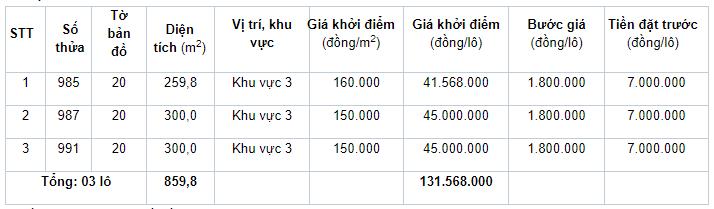 Đấu giá quyền sử dụng 21 lô đất ở tại huyện Phong Điền, tỉnh Thừa Thiên Huế - Ảnh 3.