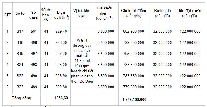 Đấu giá quyền sử dụng 21 lô đất ở tại huyện Phong Điền, tỉnh Thừa Thiên Huế - Ảnh 1.