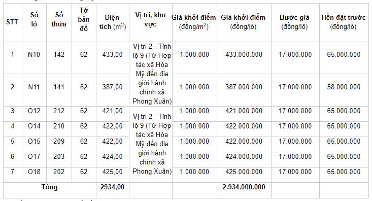Đấu giá quyền sử dụng 21 lô đất ở tại huyện Phong Điền, tỉnh Thừa Thiên Huế - Ảnh 2.