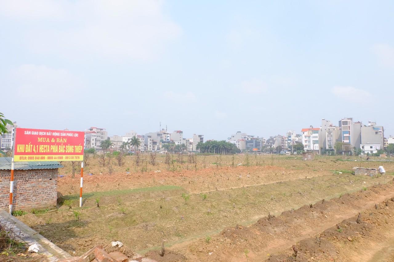 Giá đất Hoài Đức, Đông Anh, Gia Lâm cao ngất ngưởng trước thềm lên quận - Ảnh 2.