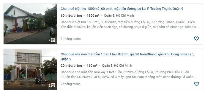 Giá đất đường Lò Lu, TP Thủ Đức, TP HCM - Ảnh 6.