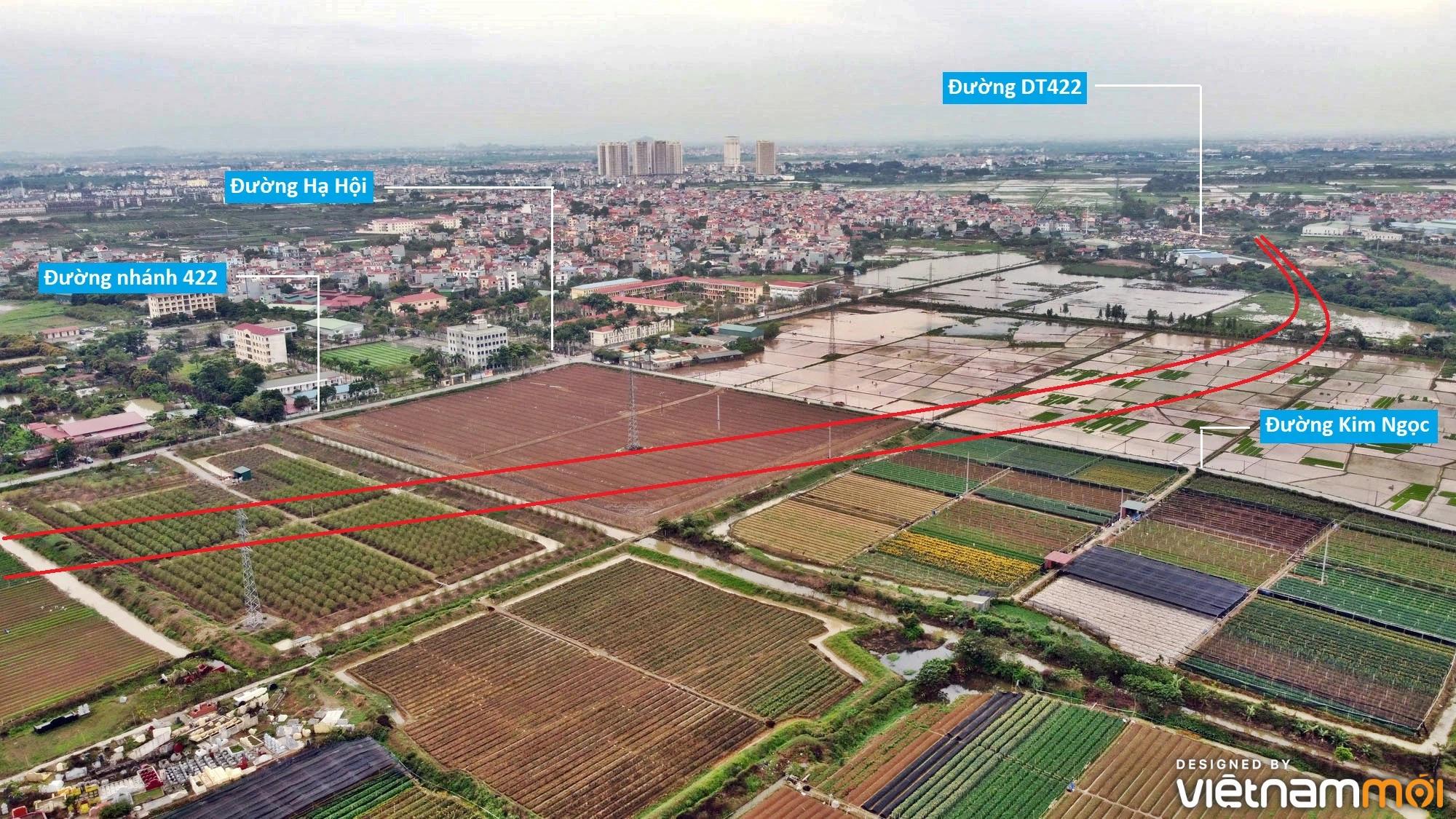 Đường sẽ mở theo quy hoạch ở xã Tân Lập, Đan Phượng, Hà Nội (phần 3) - Ảnh 5.