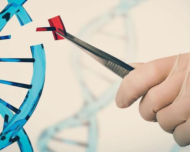 Thị trường giải mã gen tiềm năng nhưng cũng cần nhìn nhận một cách nghiêm túc - Ảnh 1.