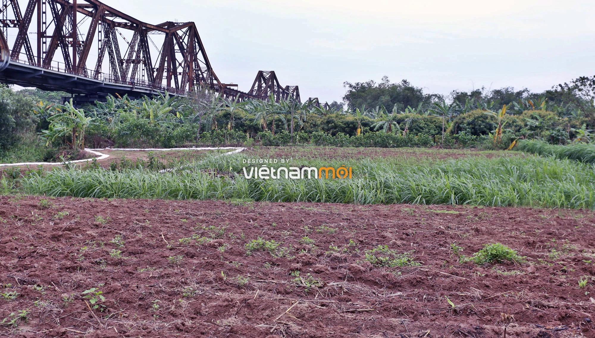 Toàn cảnh hiện trạng Phân khu đô thị sông Hồng trên địa bàn quận Ba Đình - Ảnh 20.