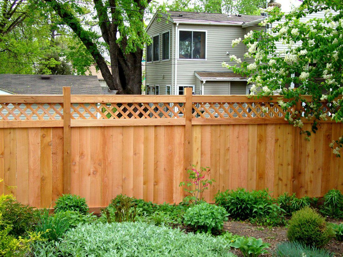 Gợi ý một số mẫu hàng rào đẹp và kiên cố cho nhà cấp 4 - Ảnh 9.
