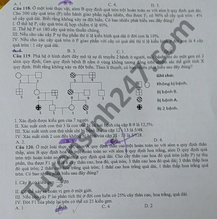 Đề thi thử THPT quốc gia 2021 môn Sinh học trường THPT Phan Ngọc Hiển (có đáp án chi tiết) - Ảnh 5.