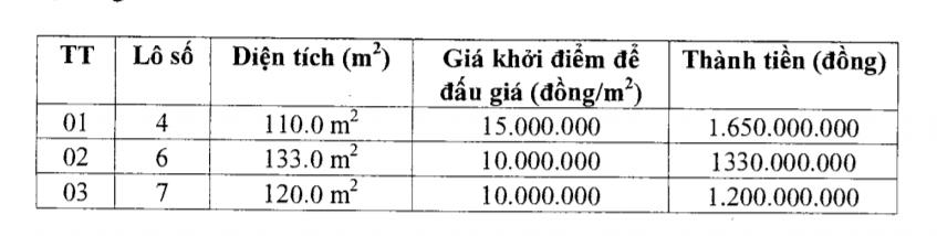 Đấu 34 giá lô đất tại Thanh Hóa - Ảnh 2.