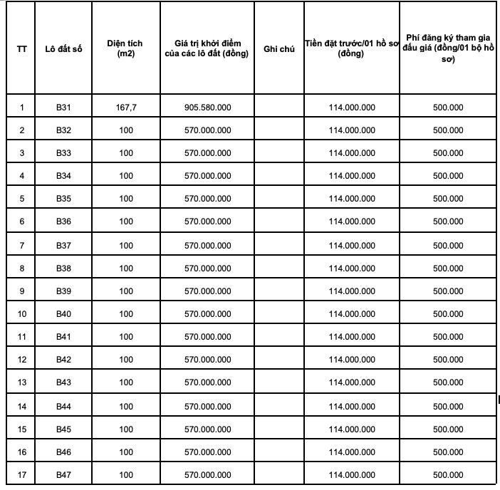 Tiếp tục đấu giá thêm 29 lô đất tại huyện Triệu Sơn, Thanh Hoá  - Ảnh 1.