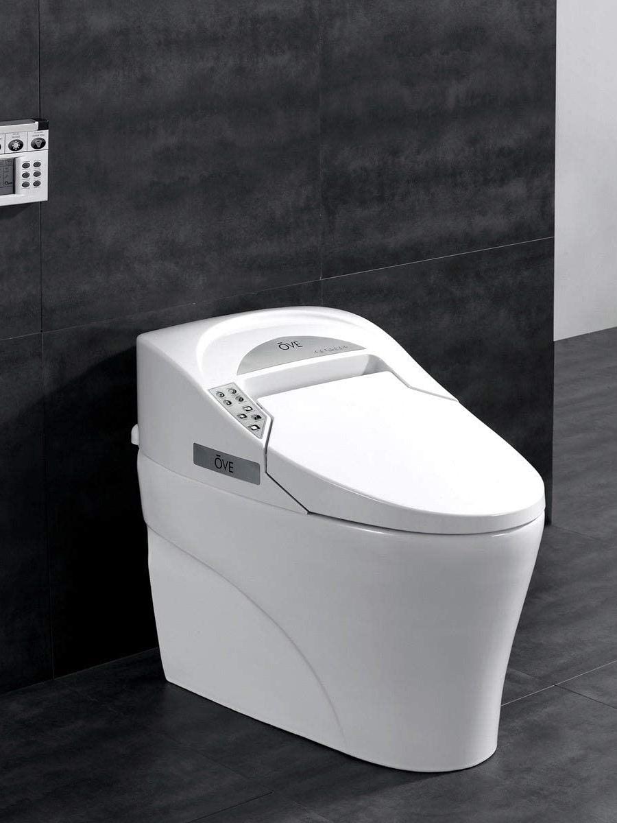 Có gì ở những nhà vệ sinh hiện đại nhất thế giới? - Ảnh 9.