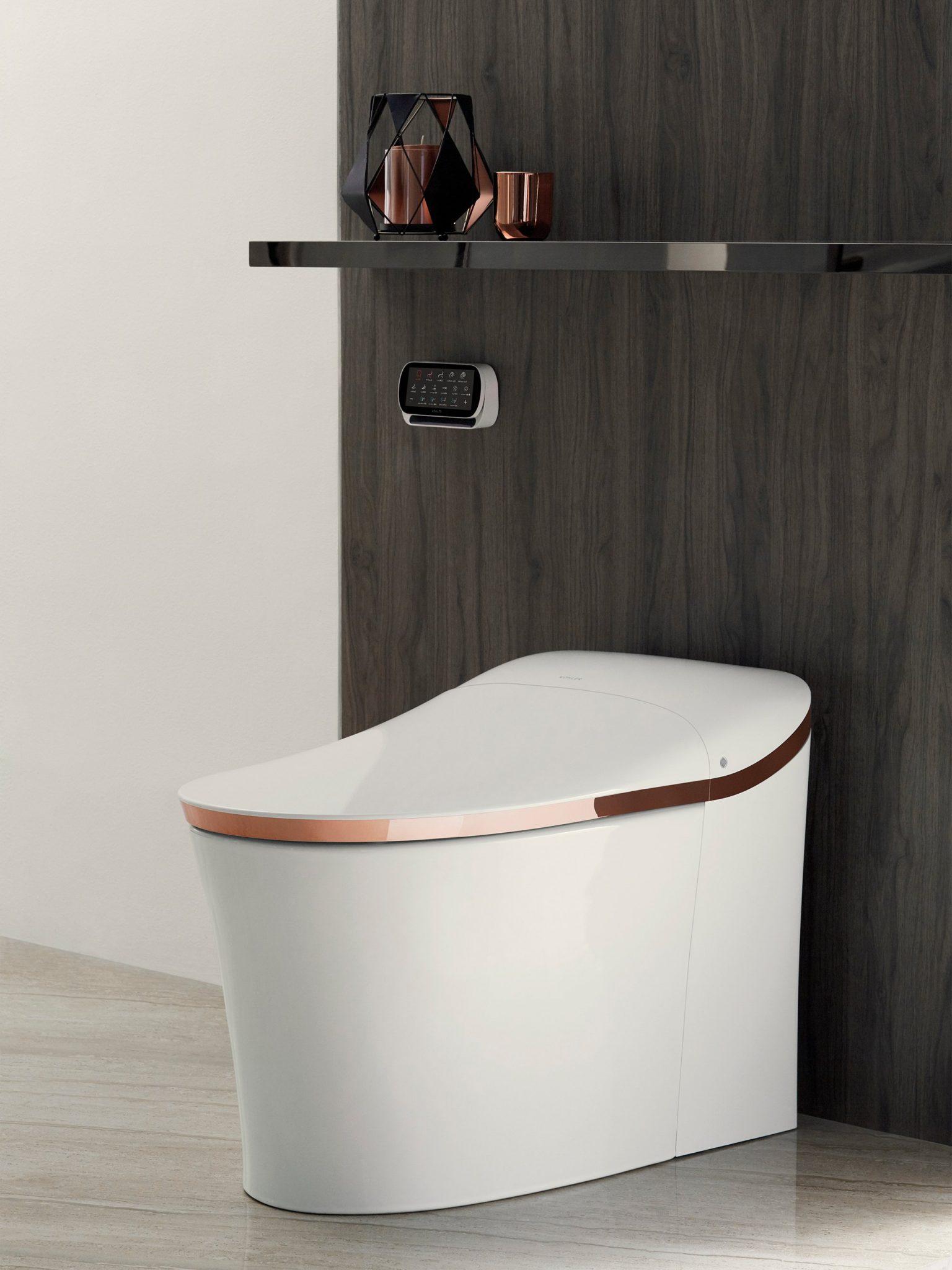 Có gì ở những nhà vệ sinh hiện đại nhất thế giới? - Ảnh 7.