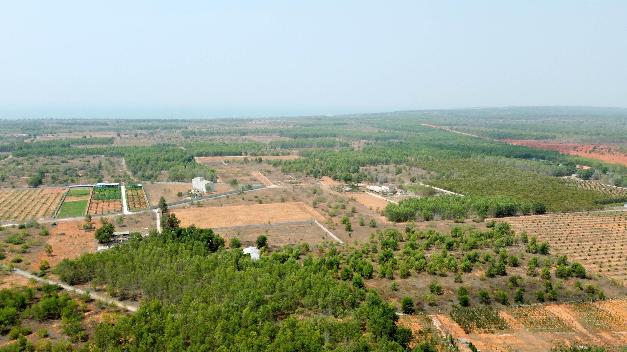 Cận cảnh sân bay Phan Thiết gây sốt đất - Ảnh 18.