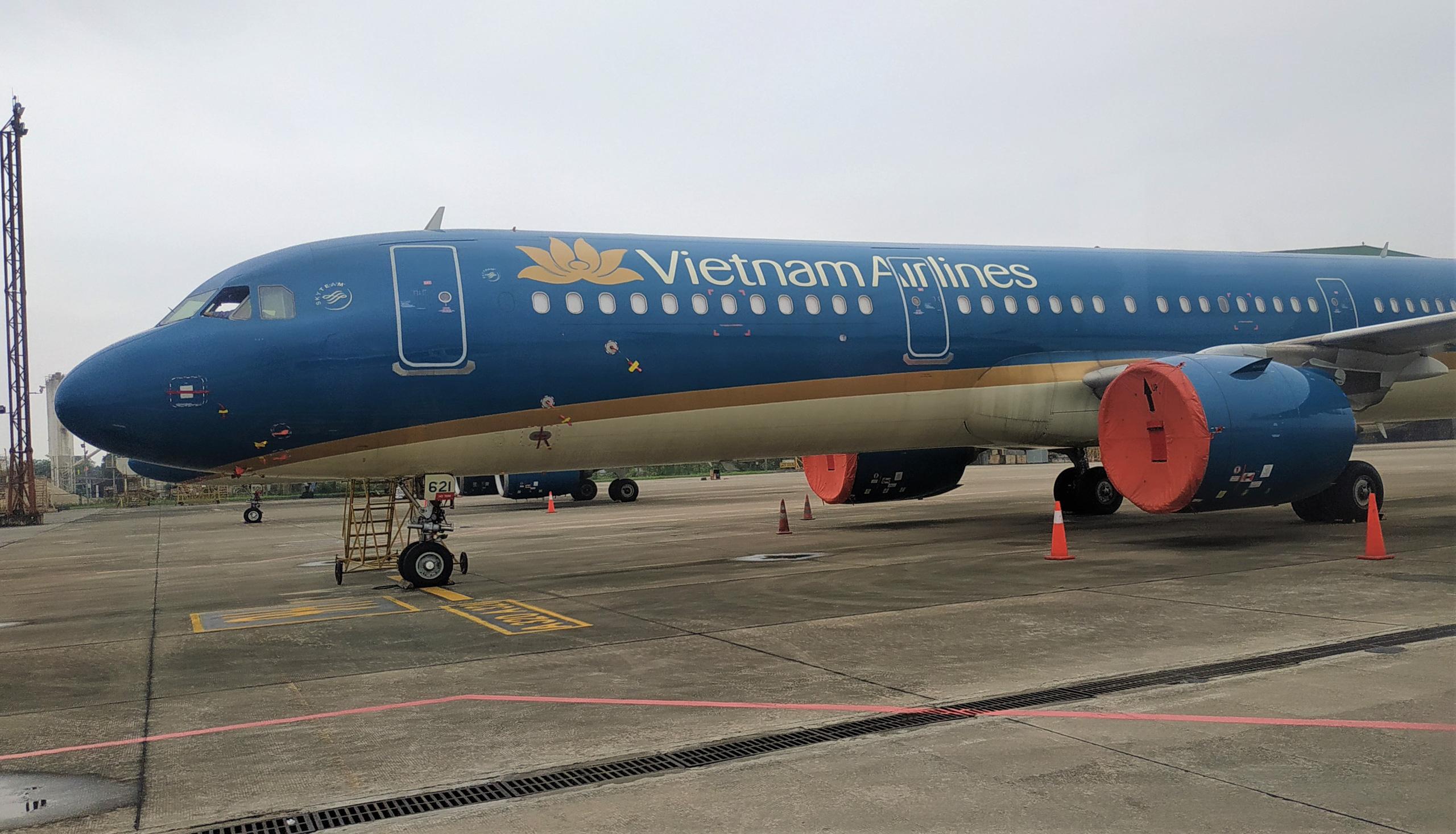 Tổng Giám đốc Pacific Airlines làm Phó TGĐ Vietnam Airlines - Ảnh 1.