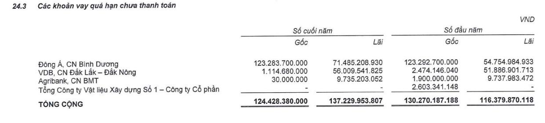 Gỗ Trường Thành: Không ai mua nợ tại DongABank, muốn huỷ phương án phát hành riêng lẻ gần 58 triệu cổ phiếu hoán đổi nợ  - Ảnh 1.