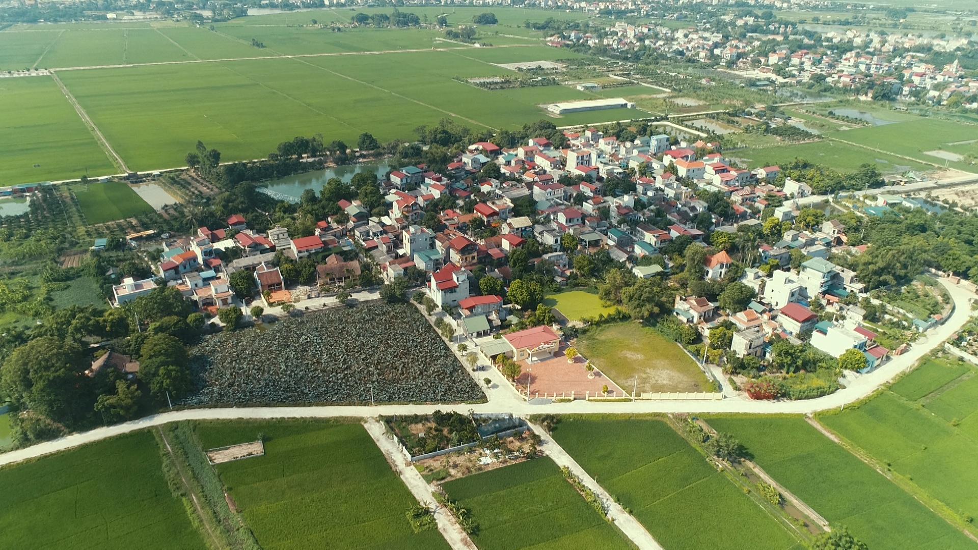 Huyện Thường Tín đấu giá 34 thửa đất, khởi điểm từ 5 triệu đồng/m2 - Ảnh 1.