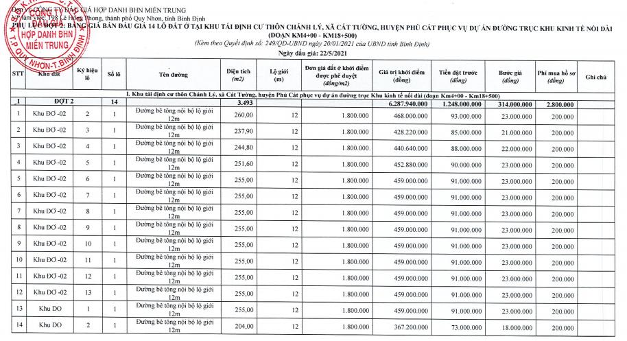 Bình Định đấu giá 47 lô đất tái định cư, khởi điểm từ một triệu đồng/m2 - Ảnh 3.