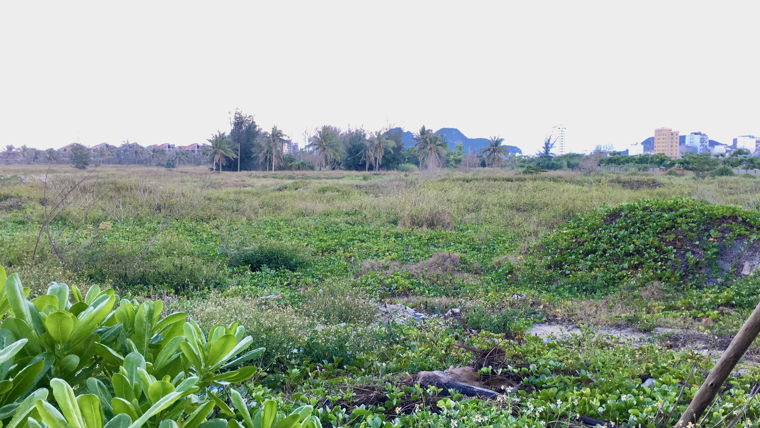 Dự án hơn 12 ha ven biển Đà Nẵng mà Công ty của vợ chồng Chủ tịch VNDirect muốn rút đầu tư hiện đang bỏ hoang - Ảnh 9.