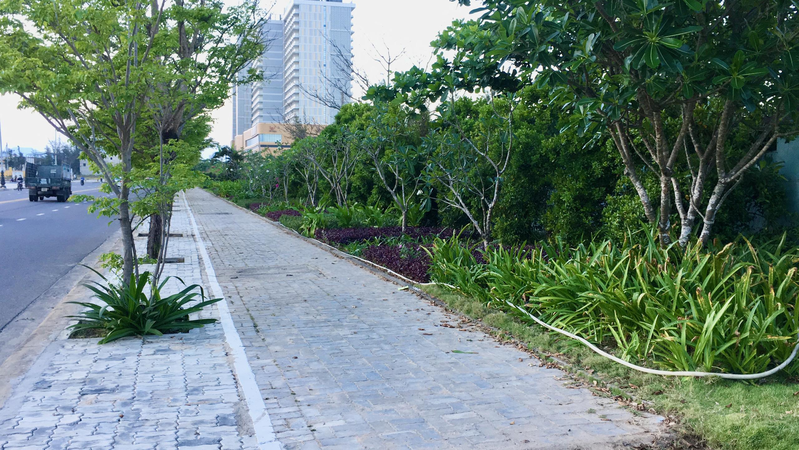 Dự án hơn 12 ha ven biển Đà Nẵng mà Công ty của vợ chồng Chủ tịch VNDirect muốn rút đầu tư hiện đang bỏ hoang - Ảnh 6.