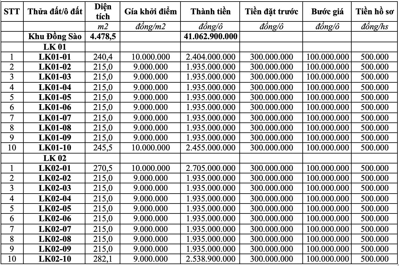 Phú Thọ tiếp tục đấu giá thêm 20 ô đất tại huyện Thanh Thủy - Ảnh 1.