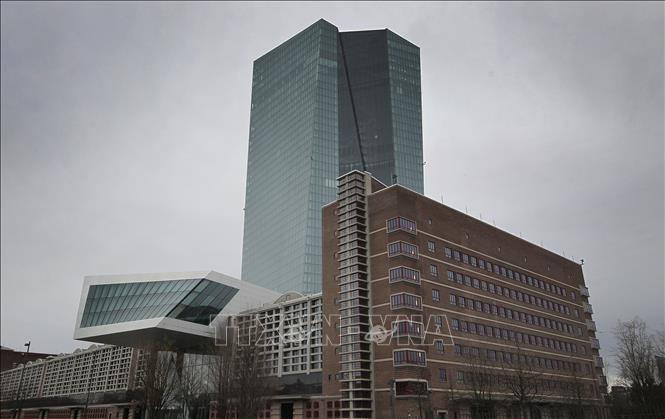 ECB cảnh báo rủi ro với sự ổn định tài chính ở Eurozone - Ảnh 1.