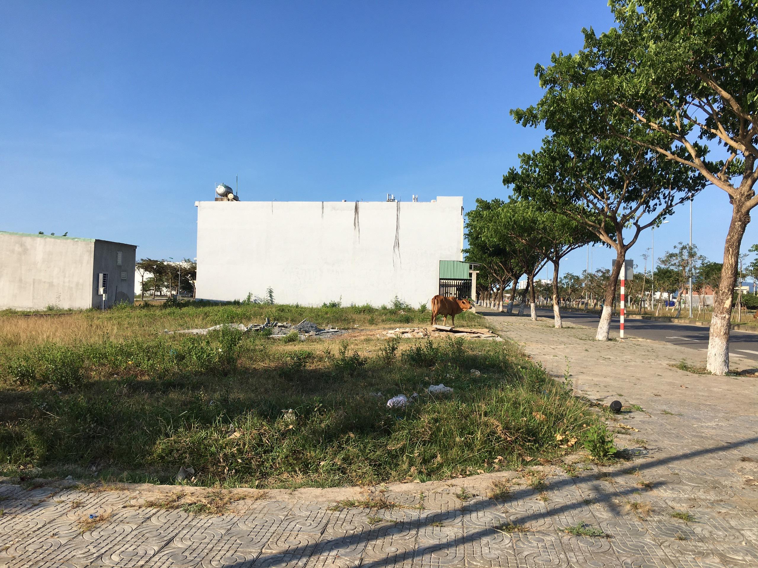 Trở lại nơi sốt đất ở Đà Nẵng, ki ốt bị dẹp hàng loạt, các dự án không bóng người - Ảnh 8.